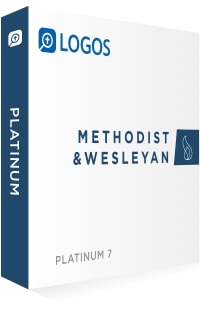 Methodist & Wesleyan Platinum
