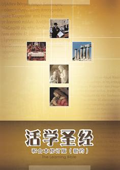活学圣经--和合本修订版 (新约)(简体) The Learning Bible–RCUV (New Testament) (Simplified Chinese)