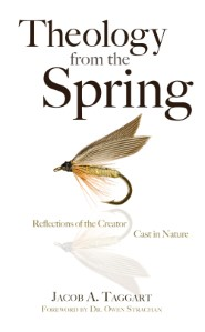 Theology from the Spring: Reflections of the Creator Cast in Nature