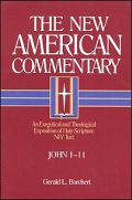 The New American Commentary: John 1-11