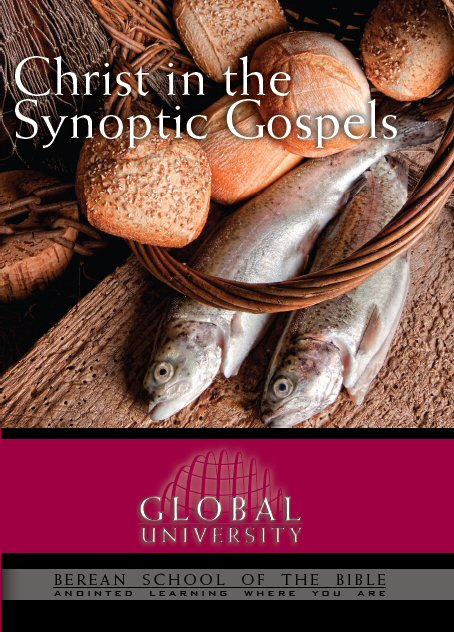 Christ in the Synoptic Gospels: BSB Level 1 [BIB 114]