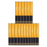 Comentario del intérprete bíblico: Nuevo Testamento (17 tomos)