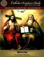 Catholic Scripture Study International: The Book of Hebrews