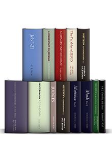 Eerdmans Commentary Collection (13 vols.)