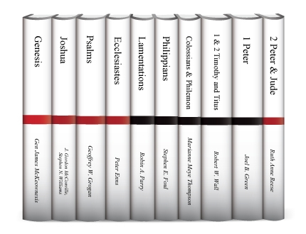 Two Horizons Commentary (10 vols.)