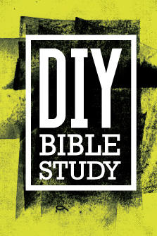 DIY Bible Study (4 vols.)