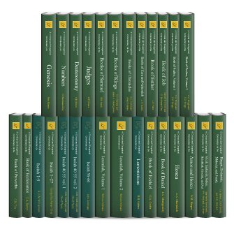 International Critical Commentary Old Testament (ICC) (28 vols.)