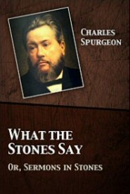 What the Stones Say: Or, Sermons in Stones