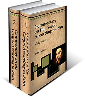 Commentary on the Gospel According to John (2 Vols.)