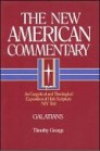 The New American Commentary: Galatians